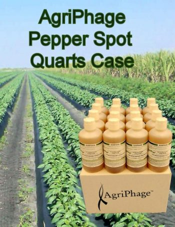 pepper-spot-quarts-case