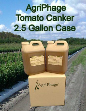 tomato-canker-2-5-case