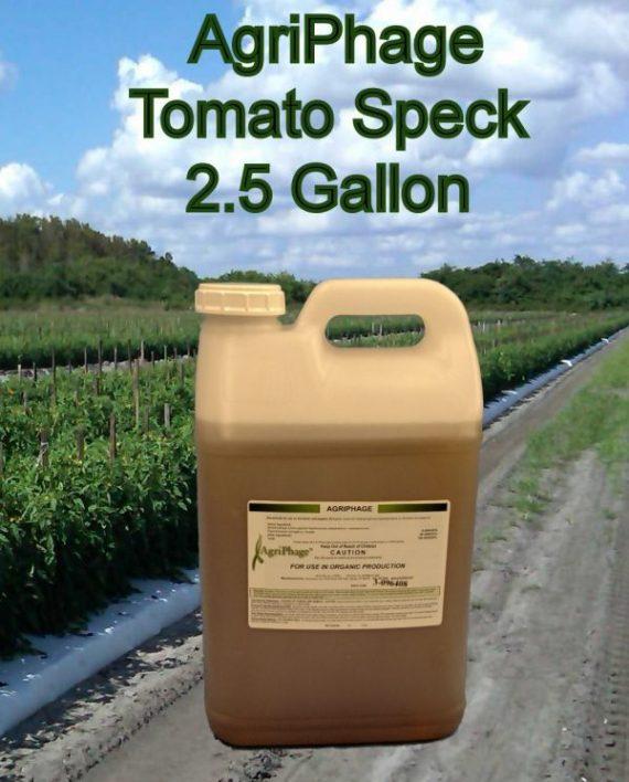 tomato-speck-2-5