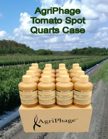 tomato-spot-quarts-case